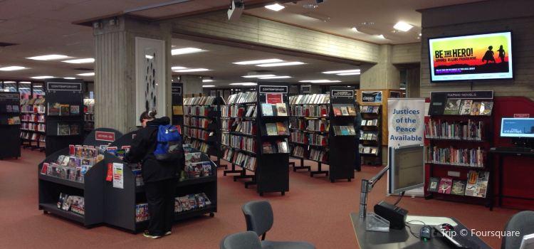 Dunedin Library2