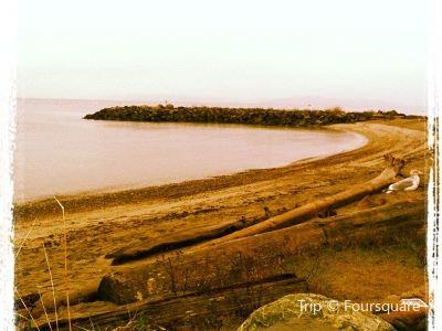 艾德蒙茲水底公園