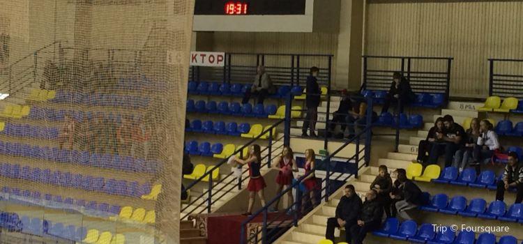 Ice Sports Palace3
