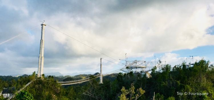 Arecibo Observatory1