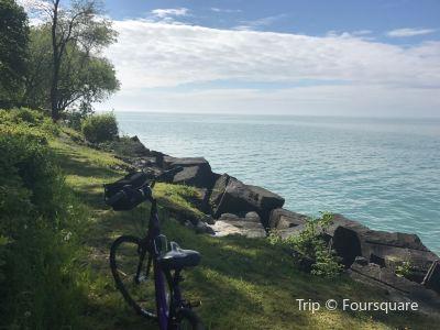 Zoom Leisure Bikes