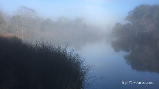 Laratinga Wetlands