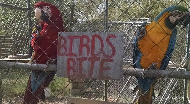 Uncle Sandy's Macaw Bird Park1