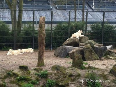 Ouwehands Zoo/Dierenpark