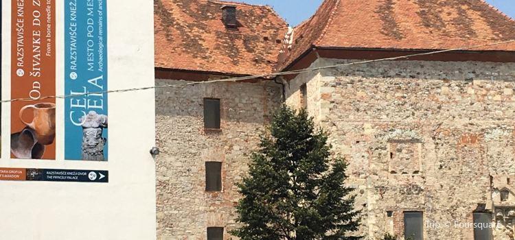 Pokrajinski muzej Celje3