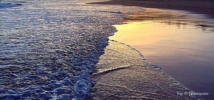 Wilderness Beach1