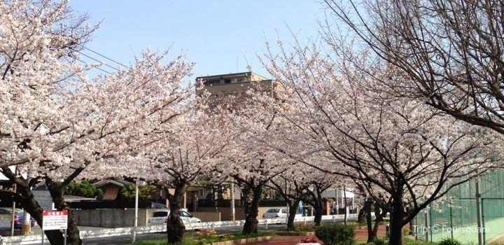 Sanno Park3