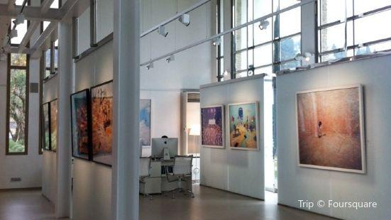 Opiom Gallery