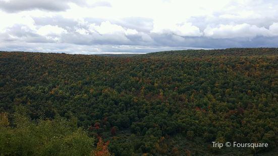 Ontario County Park