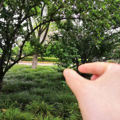 Fuchengbajing Park User Photo