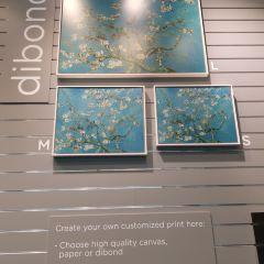 梵高美術館用戶圖片