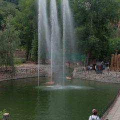 Mount Zijin Tourist Area User Photo
