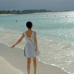 Junkanoo Beach User Photo