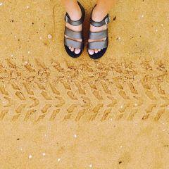 恒大海上夏威夷玩海樂園用戶圖片