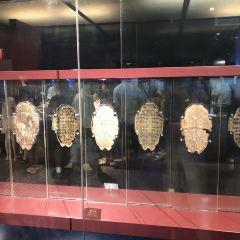 殷墟博物苑用戶圖片