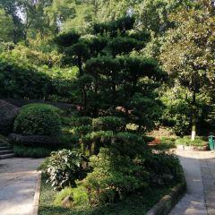 Beibei Park User Photo