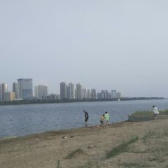 陽光沙灘用戶圖片