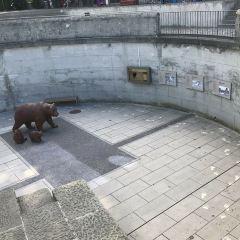 Bear Plaza User Photo