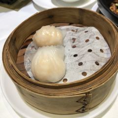Jin Gui Huang Chao User Photo