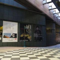 도쿄도 사진 미술관 여행 사진