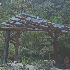 Fenghuang Mountain Park User Photo