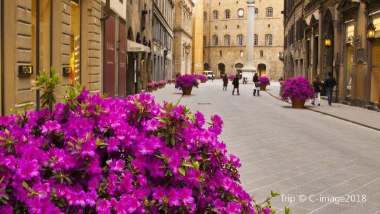 Via de' Tornabuoni & Via della Vigna Vecchia