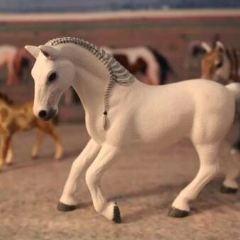 利比紮馬博物館用戶圖片