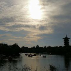 白浪綠洲濕地公園用戶圖片