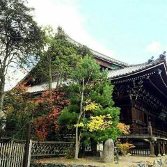 清涼寺用戶圖片