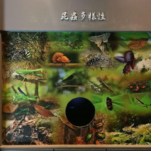 타이루거 국립공원 관광안내소