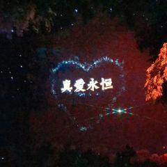판타지 동화 성 여행 사진