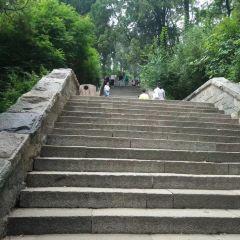 yao guan ding User Photo