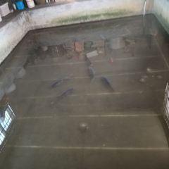 伊甸園美門溫泉用戶圖片