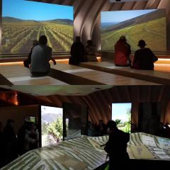 波爾多葡萄酒博物館用戶圖片