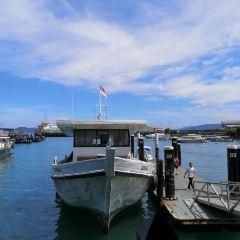 哲斯頓港碼頭用戶圖片
