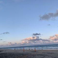梅茵海灘用戶圖片