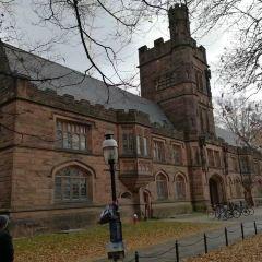 普林斯頓大學用戶圖片