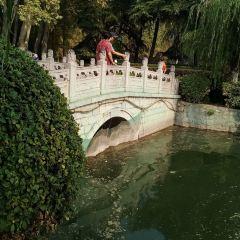 飛騎橋用戶圖片