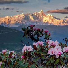 雅魯藏布大峽谷用戶圖片