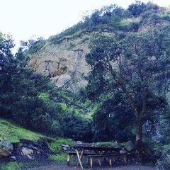 Santuario de la Naturaleza el Arrayan User Photo