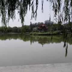 青城公園用戶圖片