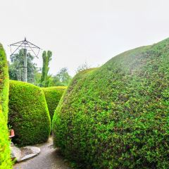 陽光草莓園用戶圖片