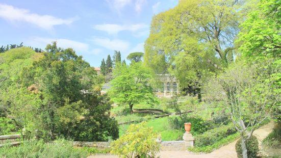 蒙彼利埃植物園