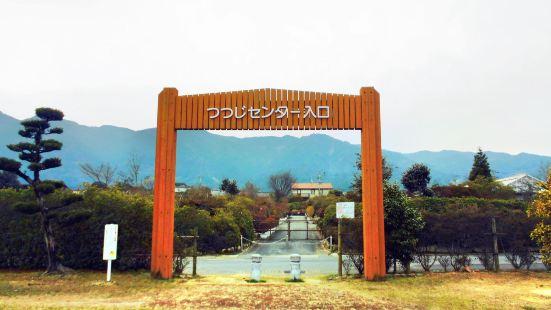The center of Azalea foundation in Kurume city (Tsutsuji Center)