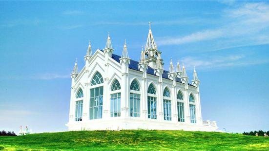 Provence Lavender Manor of Harbin
