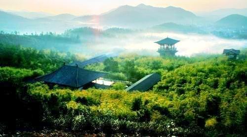 Shuikou Tea Culture Scenic Area