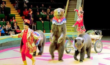 Great Moscow Circus Present