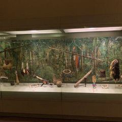 Museum of Natural History User Photo