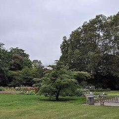 Botanical Gardens User Photo