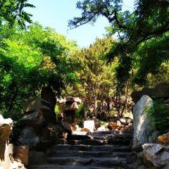 Dongdan Park User Photo